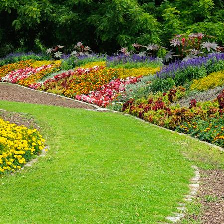 公園で花の花壇 写真素材