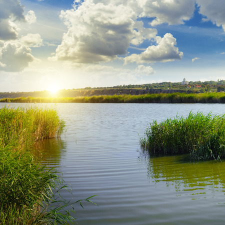 reveille: thickets of reeds on the lake and sun