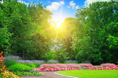 flowerbeds: summer park with beautiful flowerbeds