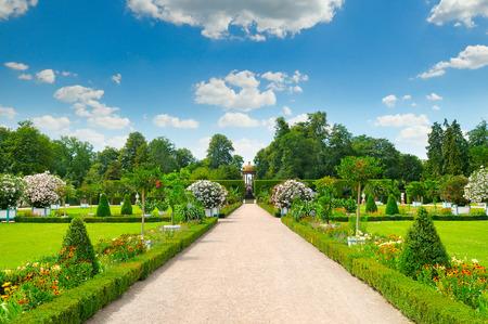 美しい花壇に夏の公園