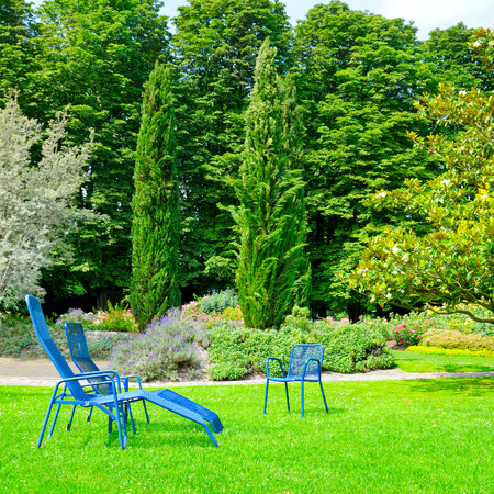 recliner: beautiful summer park with lawn and recliner