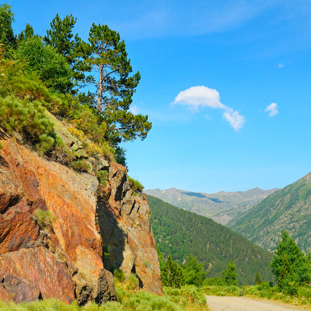 Scenic mountain landscape with cliff and pines