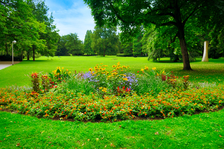 grassplot: summer park with beautiful flowerbeds