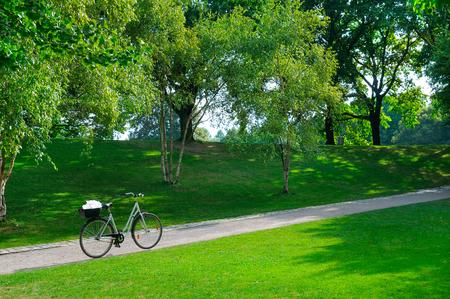 夏の公園、自転車、自転車のパス