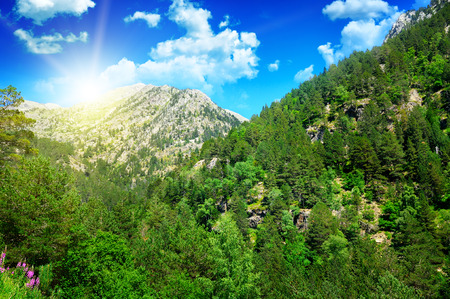 glades: beautiful mountain landscape and sunrise Stock Photo