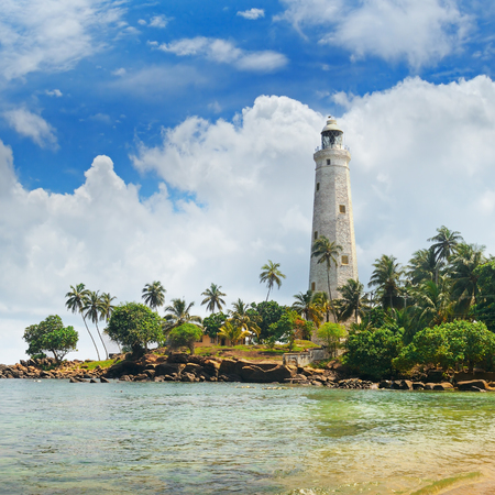 lighthouse, lagoon and tropical palms (Matara Sri Lanka)
