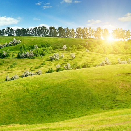 Hilly green fields and the sun on a blue sky