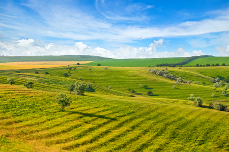 Green field and blue sky. Picturesque hills formed by an old river terrace. Moldova.