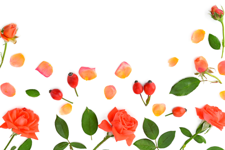 Pink roses isolated on white background. Flat lay, top view. Free space for text. Stock Photo