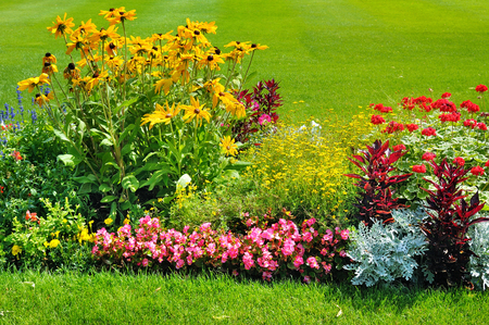 Summer flower bed and green lawn background .