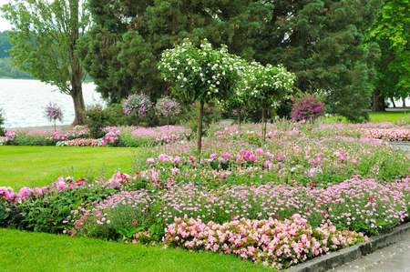 Summer park with beautiful flower beds and lawn. Concept ecology protection.