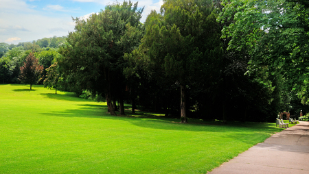 Summer park, green meadow and blue sky. A bright sunny day. Wide photo.