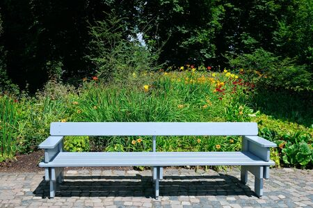 A bench in the alley in the park on a sunny day. 스톡 콘텐츠