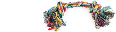 Dog toy - colorful cotton rope for games, isolated on white background . Wide photo. Free space for text. 版權商用圖片