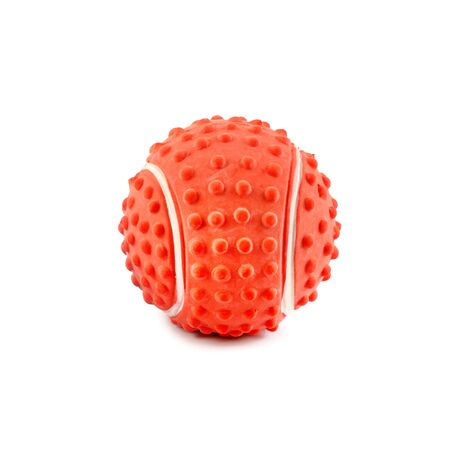 Ball toy for dog isolated on a white background. Rubber toys for pets.
