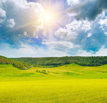 Picturesque hilly landscape. Green field and sun on blue sky.