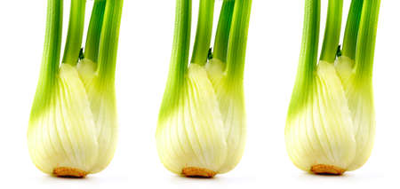 Fresh fennel bulbs with leaves on white