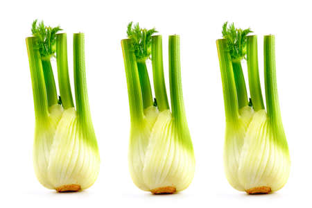 Fresh fennel bulbs with leaves isolated on white background.
