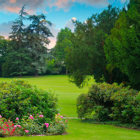 Cozy city garden with green lawns and many flowers at sunset. Banco de Imagens
