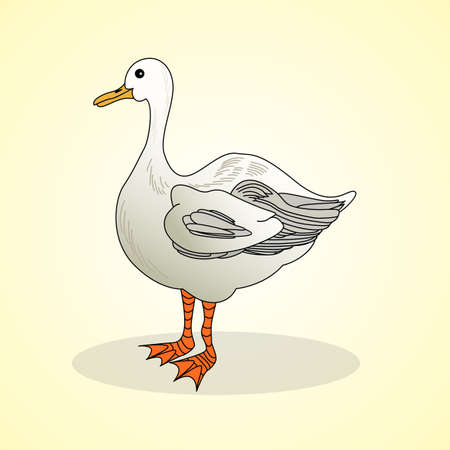 poultry farm: Goose. Aviculture. Vector illustration.