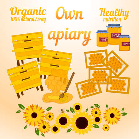 apiculture: Beekeeping vector set. Honey in the jar. Bee on the flower. Own apiary. Vector illustration.
