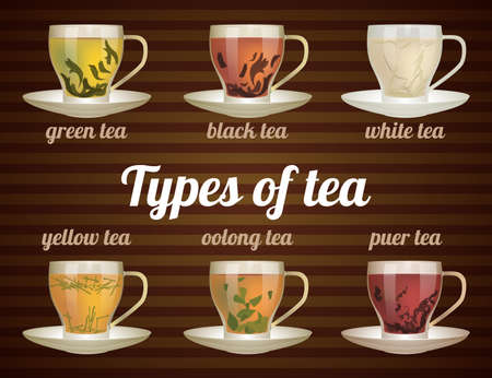 oolong: Types of tea in glass cups with tea leaves. Vector illustration. Vector tea set.