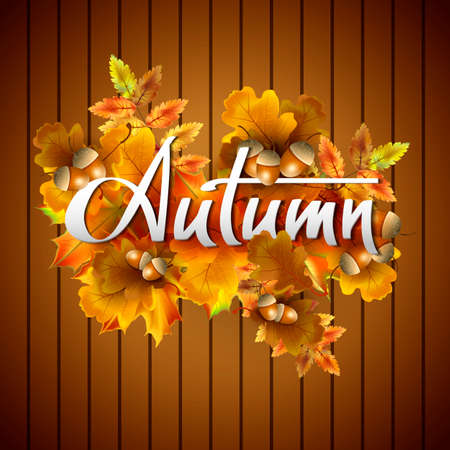 planking: Autumn vector background with autumn leaves and acorns. Hand-written lettering. Typography Illustration