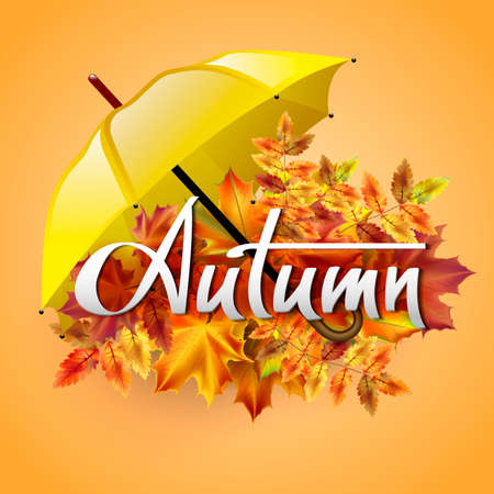 yellow umbrella: Autumn vector background with autumn leaves and yellow umbrella. Hand-written lettering. Typography Illustration