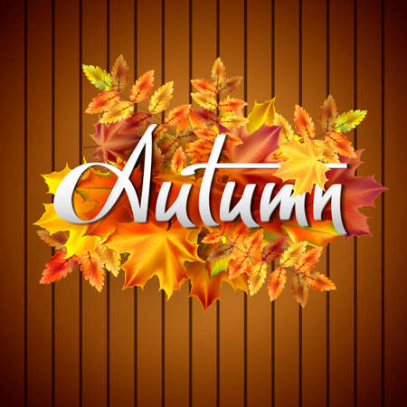 planking: Autumn vector background with autumn leaves. Hand-written lettering.