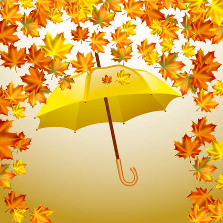 yellow umbrella: Autumn vector background with autumn leaves and yellow umbrella. Illustration
