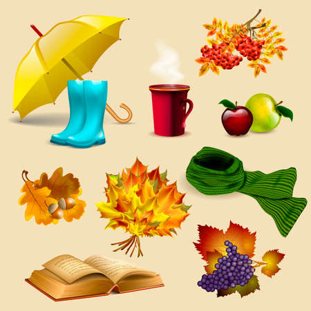 Set of autumn elements and objects, autumn leaves, fruits, umbrella, boots, old book, scarf and cup of hot coffee or tea.