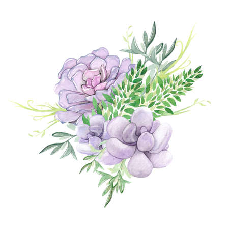 Watercolor succulent bouquet Stock Photo