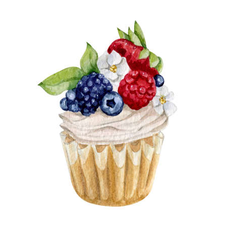 Watercolor illustration of sweet dessert cupcakes
