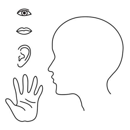 Organs of human senses. Vector illustration.