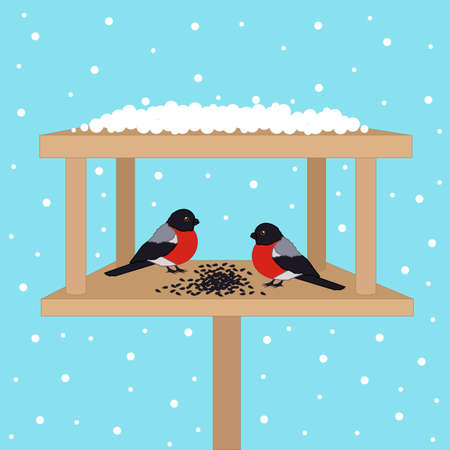 Bullfinch in a bird feeder in winter. Vector illustration.