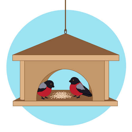 Bullfinches in the bird feeder. Vector illustration.