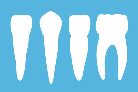 A set of teeth on a blue background. Vector illustration.