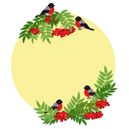 Frame of rowanberry elements. Bullfinch and mountain ash. Vector illustration. Çizim