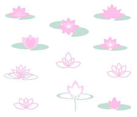 Collection of various lotuses on white background. Vector illustration.