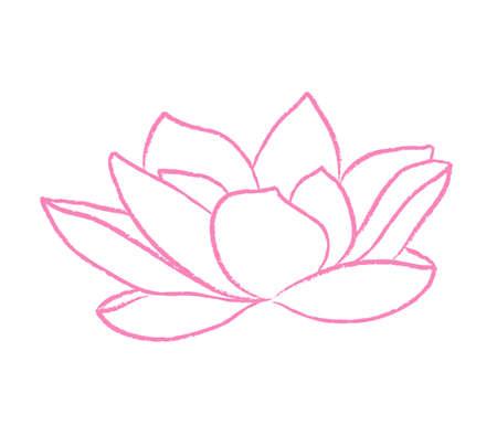 Pink lotus on white background. Line. Vector illustration. Illustration