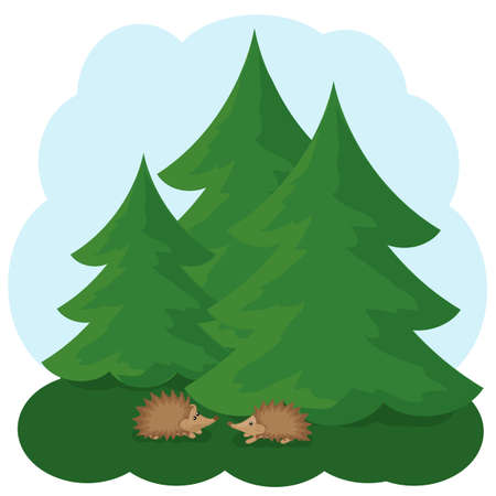 Forest and family hedgehogs. Reserve. Illustration. Stockfoto