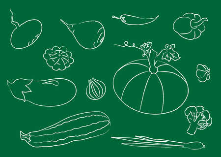 A collection of different vegetables on a green background. Vector illustration.