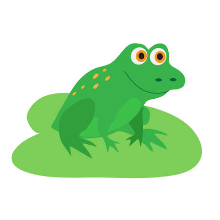 Funny frog sitting on a white background. Vector illustration.