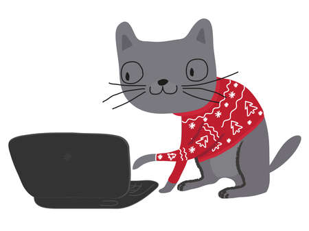 A cat in a Christmas sweater looks into a computer.