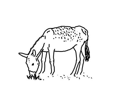 Donkey on a white background. Silhouette. Vector illustration. Vettoriali
