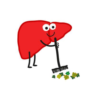 The human liver gets rid of toxins. Cartoon. Vector illustration.