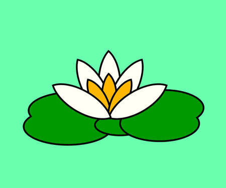 Blooming white lotus on a green background. Symbol. Vector illustration.