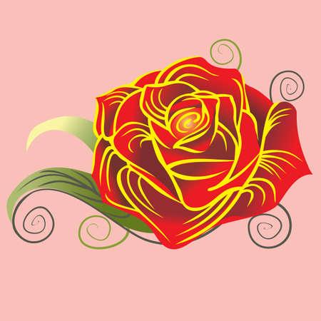 red rose: Red rose. Vector illustration.