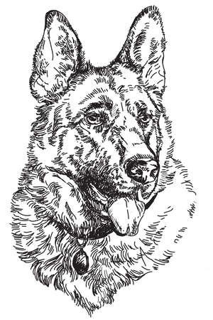 German shepherd Engraving vector hand drawing Illustration