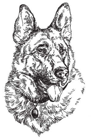 German shepherd Engraving vector hand drawing Illustration
